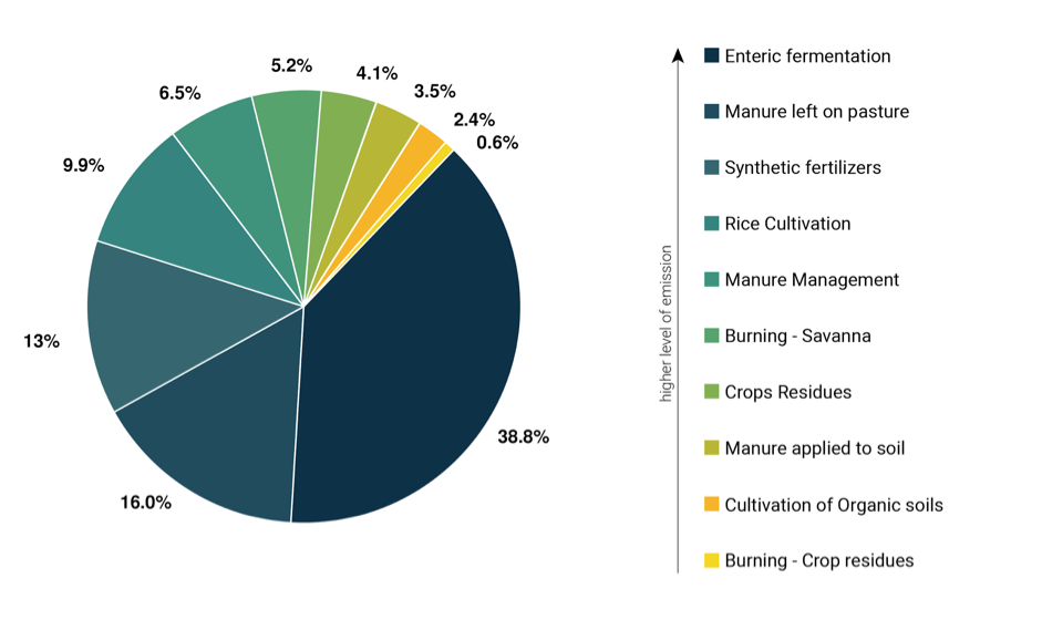 Figure 2 - GHG emissions (expressed as CO2-equivalents) within sub-sectors agriculture for 2017. Source: FAOSTAT, (2020). Adjustments to the figure made by Ana Somaglino from reNature.