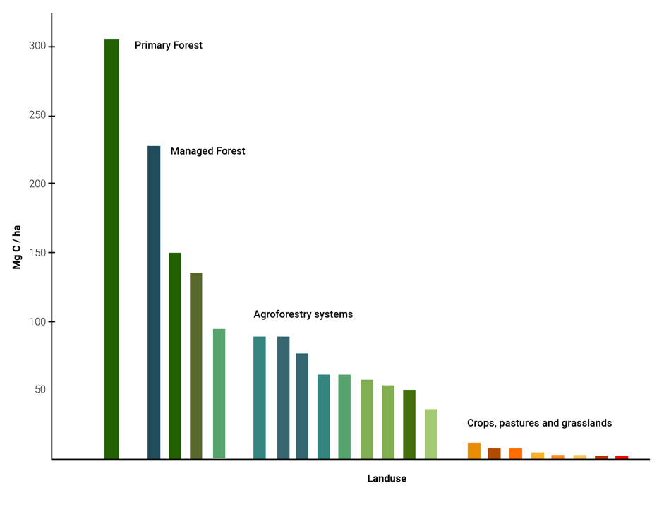 Figure 6 - An illustration of different land use management systems in the tropics and their potential to store carbon. The bars within each category represent different case studies. Within the agroforestry systems, case studies include a jungle rubber system of Sumatra, mixed cocoa and fruit tree plantations of Cameroon, peach palm systems of Peru, or the pine—banana—coffee system of eastern Java. Source: Verchot et al., (2007). Adjustments to the figure made by Ana Somaglino from reNature.