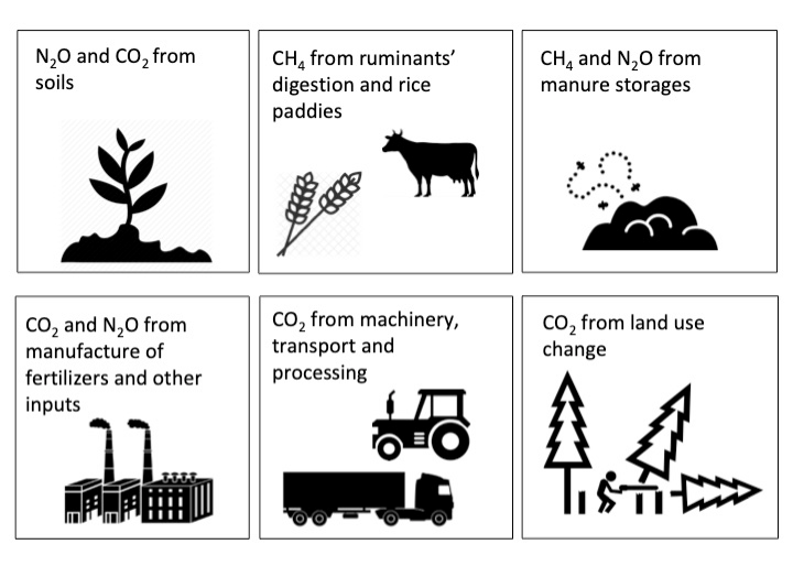 Figure 9 - agricultural practices as common sources of the different greenhouse gases. Source: carboncloud.
