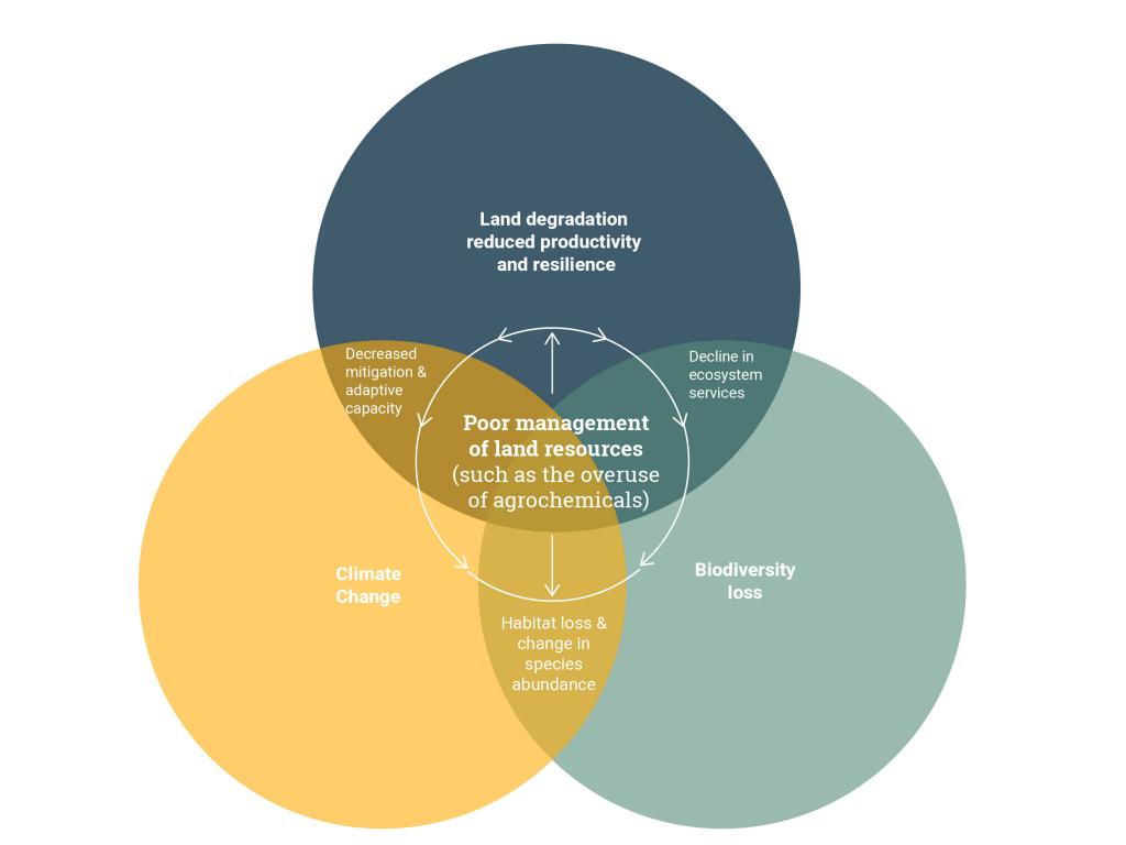 overlap-climate-land-biodiversity