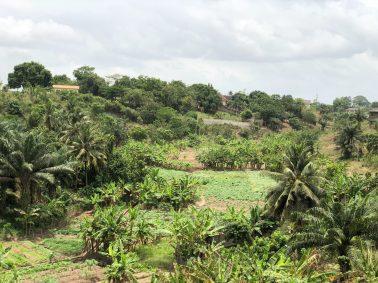 West-Africa-Landscape