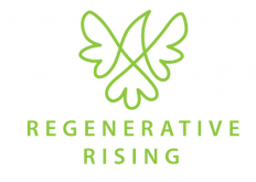 regenerative earth summit logo